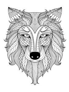 coloriage mandala adulte animaux de la catégorie coloriage adulte à imprimer