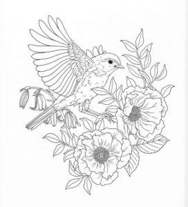livre coloriage adulte animal & nature de la catégorie coloriage adulte à imprimer