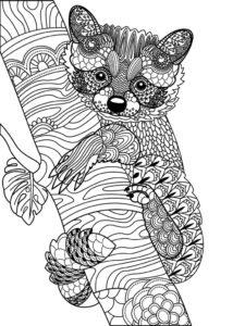 coloriage adulte animaux à imprimer gratuit de la catégorie coloriage adulte à imprimer