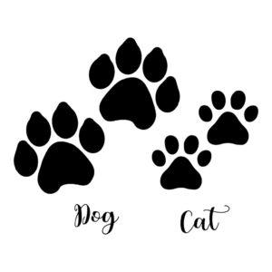 image a imprimer chien et chat de la catégorie coloriage chien