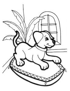 coloriage chien chiot gratuit imprimer de la catégorie coloriage chien