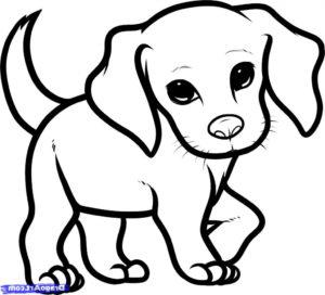 coloriage chien facile de la catégorie coloriage chien