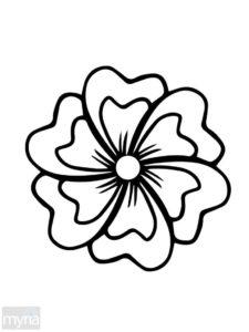 cahier coloriage adulte fleurs de la catégorie coloriage fleur