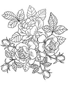 coloriage fleur pour adulte de la catégorie coloriage fleur
