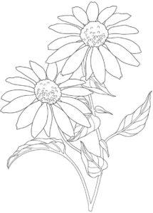 coloriage codé fleur maternelle de la catégorie coloriage fleur