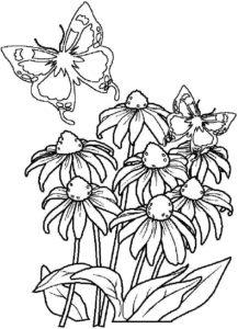 bouquet de fleur à imprimer et colorier de la catégorie coloriage fleur