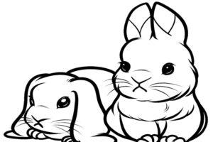 coloriage lapin mignon imprimer de la catégorie coloriage lapin