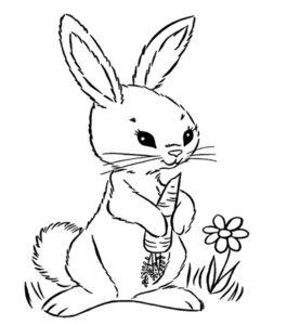 coloriage lapin carotte de la catégorie coloriage lapin