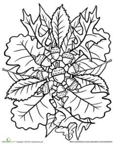 coloriage mandala maternelle automne de la catégorie coloriage mandala