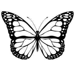coloriage papillon gratuit de la catégorie coloriage papillon