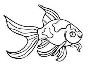 coloriage poisson à imprimer de la catégorie coloriage poisson